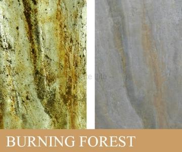 burning-forest.jpg